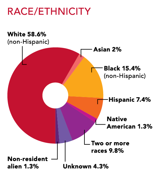 Wells College Student Body by Race and Ethnicity