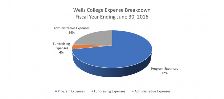 pie chart indicating Administrative Expenses 24%, Fundraising Expenses 4%, Program Expenses 72%