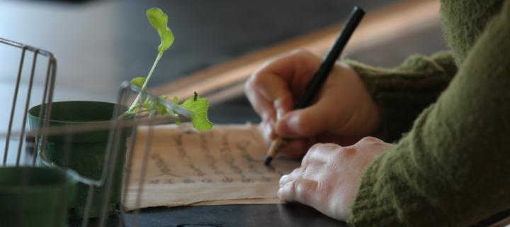 plant and notebook