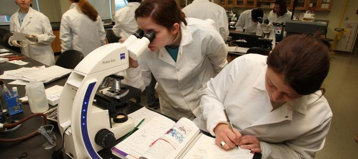 Science lab using microscopes