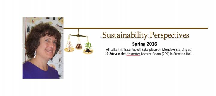 carol glenister and sustainability perspectives series logo