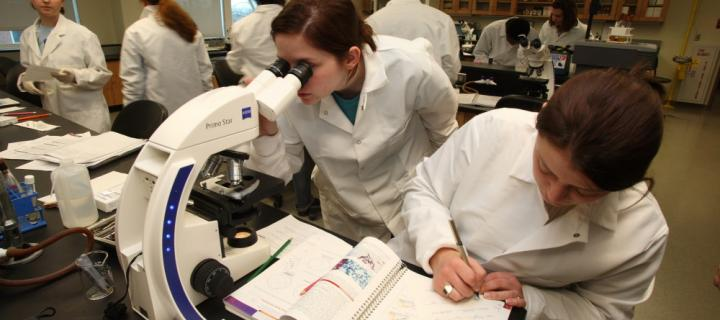 students with laboratory equipment