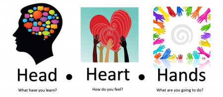 "artistic images of a head, heart and hands with the questions ""what have you learned?"" ""how do you feel?"" ""what are you going to do?"""