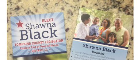 image of shawna's campaign flyers