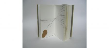 """WBAC@25"" art work showing open book against a gray background"