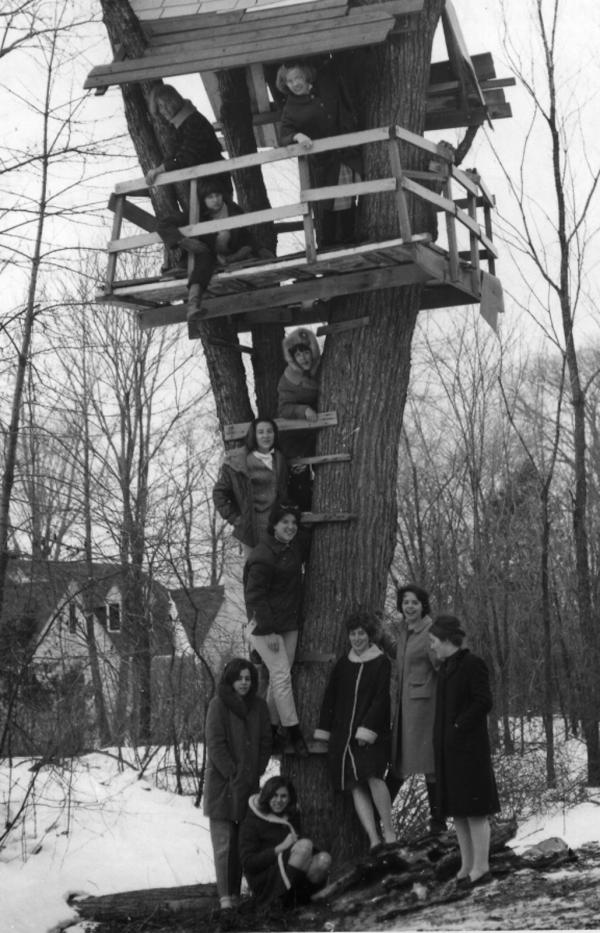 vintage photo of women in and around a treehouse
