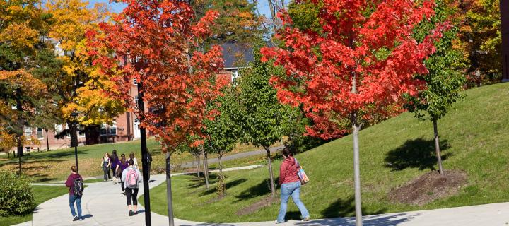 autumn view of campus