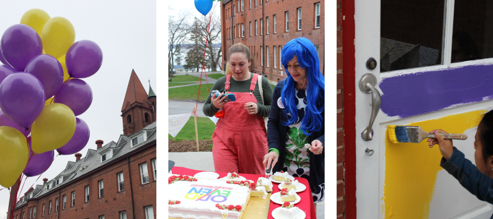 images of baloons, cake, and painting at the reveal celebration