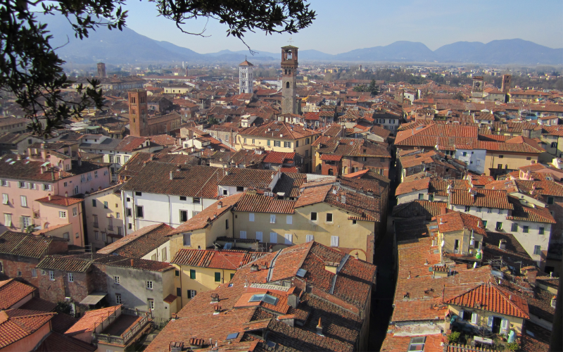 Florence skyline from above
