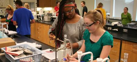 chemistry students conducting laboratory work