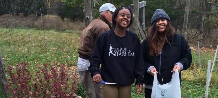 Students in the campus garden