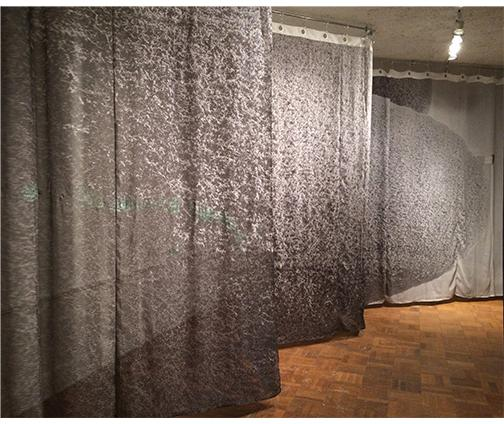 curtain with image of hedge by Alli Miller + Trey Burns