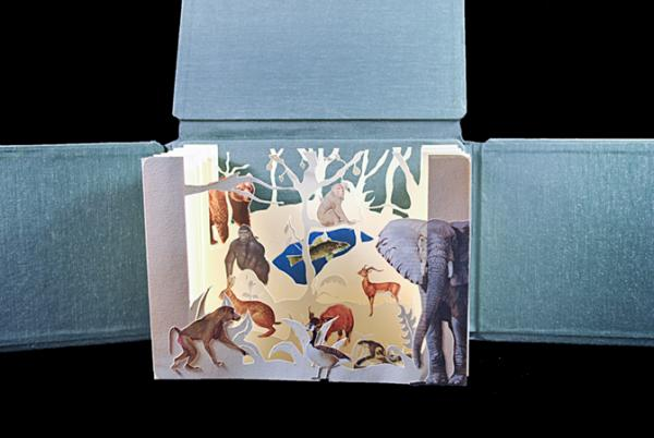 Artists book with animal-themed popups by Alex Essandoh